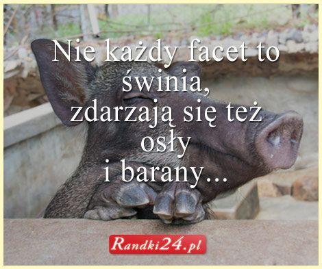 Nie każdy #facet to świnia, zdarzają się też osły i barany...