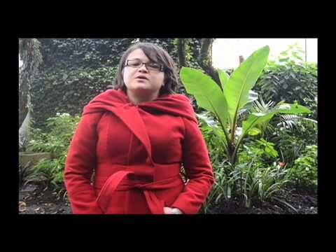 35 museos de Bogotá son gratis el último domingo de cada mes   Noticias Bogotá   CIVICO.com