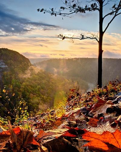 Letchworth Canyon at Sunhttp://nysparks.com/parks/79/details.aspx#rise - HDR