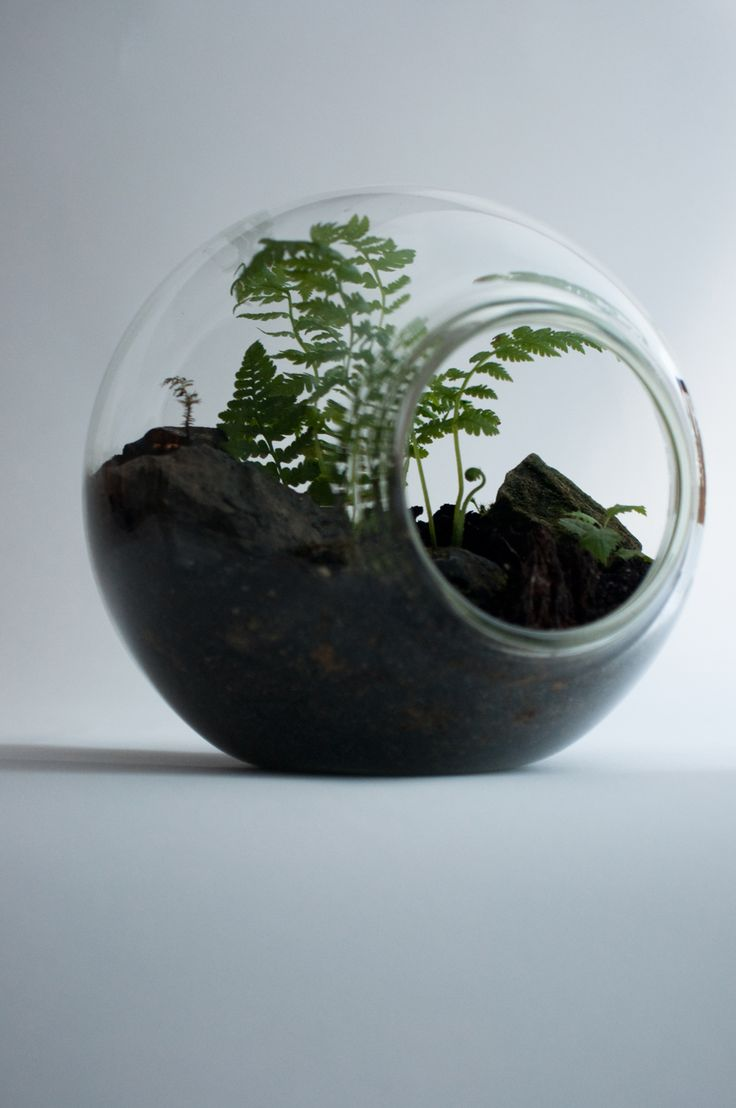 1000 Images About Tiny Worlds On Pinterest