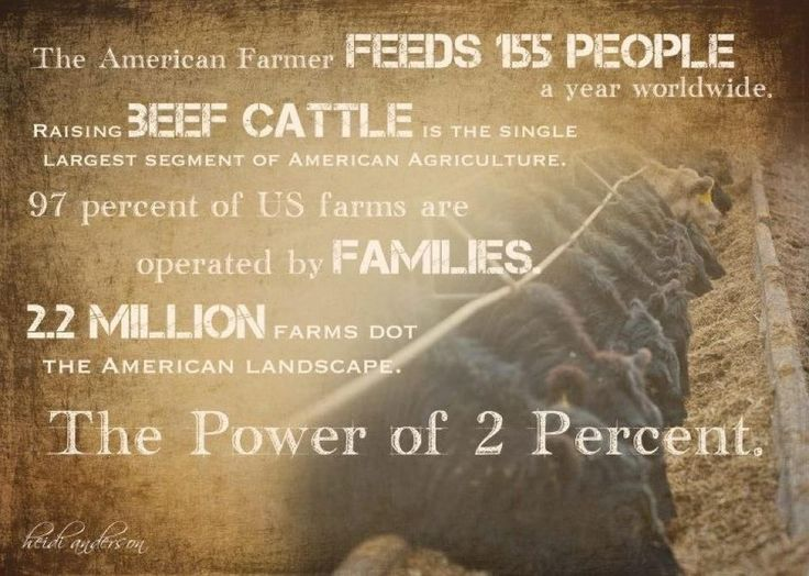 The power of cattle these numbers are out of Farm Bureau Farm Facts