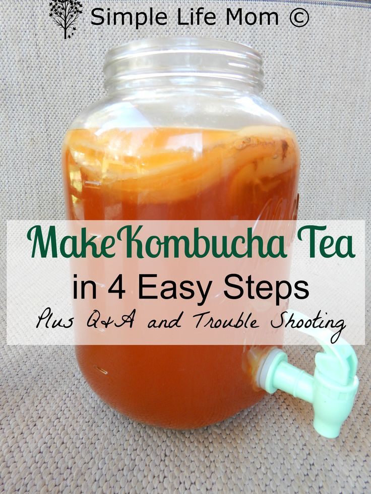 Step by step instructions on How to Make Kombucha Tea. This kombucha recipe has easy instructions for a healthy gut, & probiotic drink for natural health.