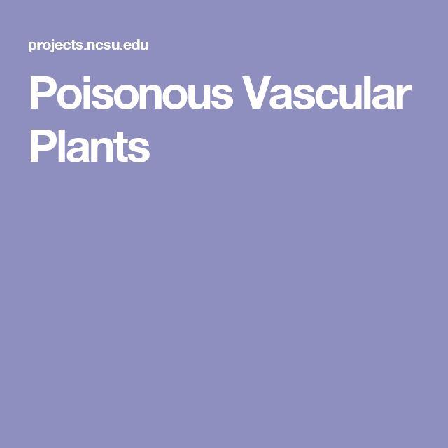 Botany check paper online