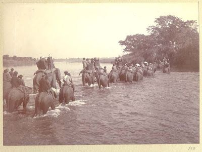 King George V's Hunting in Nepal in December 1911 Part I - Old Indian Photos