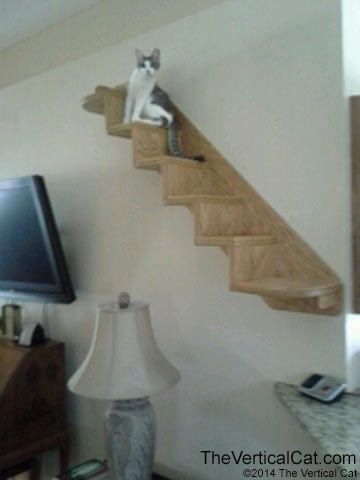 6-Step Cat Stair from The Vertical Cat on Etsy, $138.00