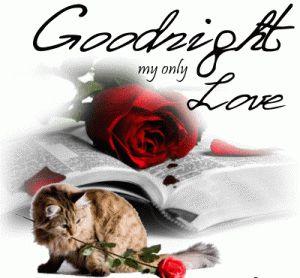 GooD+NiGht+My+Lover