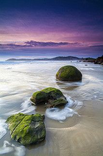 Evolution | Moeraki Boulders, New Zealand par v on life