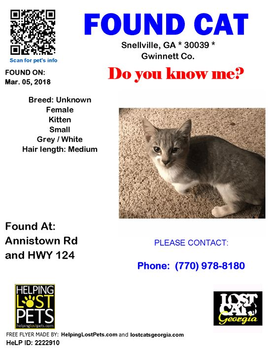 Found Cat - Snellville GA. - March 5 2018 Closest Intersection - Annistown Rd & HWY 124 County - Gwinnett  Do you know this Cat? #Snellville (Annistown Rd & HWY 124)  #GA 30039 #Gwinnett Co.  #Cat 03-05-2018! Female #Unknown Grey / White/  Note from Finder: Was crying outside my door at the Stonecreek Apartment complex. Came right in friendly and hungry.  CONTACT Phone: (770) 978-8180  More Info Photos and to Contact: http://ift.tt/2FZpGHP  To see this pets location on the HelpingLostPets…