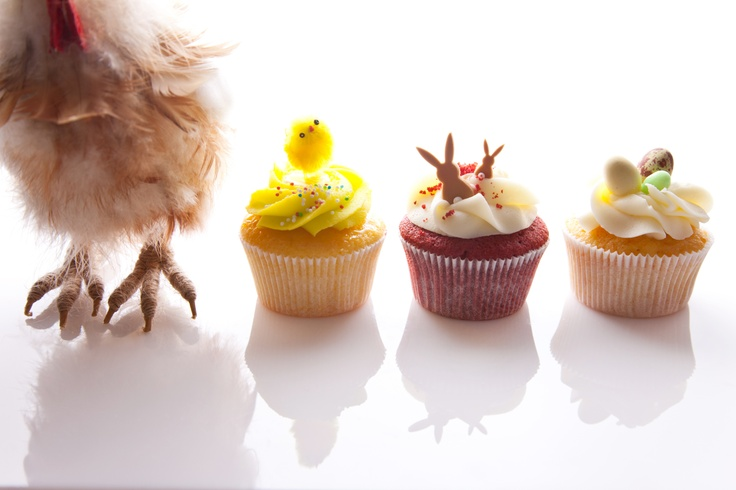 if only hens could lay cupcakes!