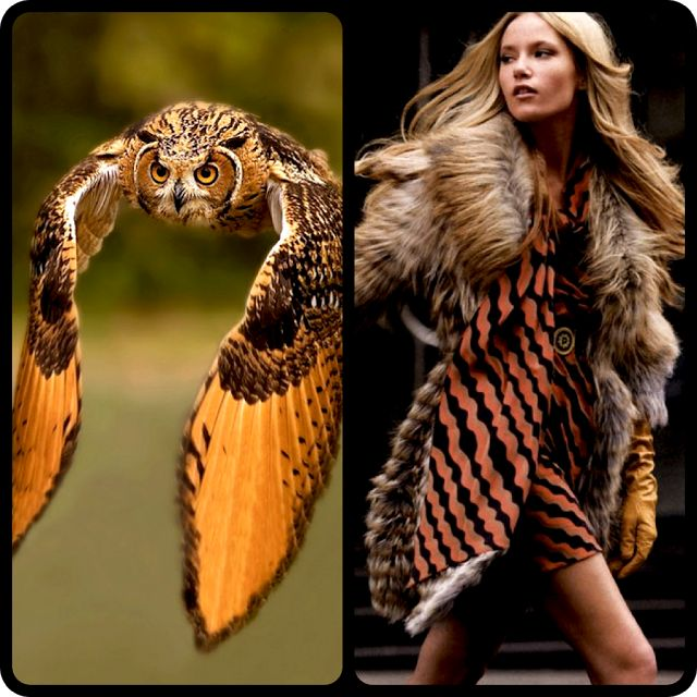 owl to dress and fur vest
