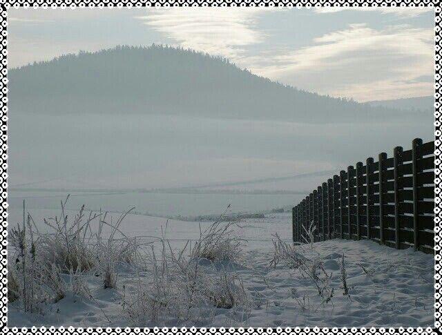 Zima z płotem