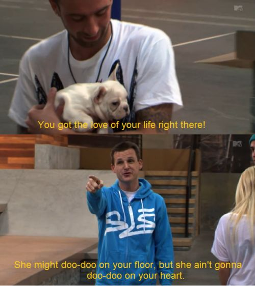 hahaa: Bulldogs Puppies, Funny Dogs, French Bulldogs, Funny Pictures, Fantasy Factories, Dogs Photos, Dogs Lovers, Funny Memes, Rob Dyrdek