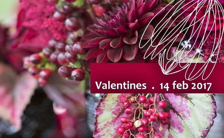 #Valentines is around the corner! #order #flowers today! follow the link to some stunning beauties #bunches #arrangements. fall in love with flowers www.aspenandco.co.za