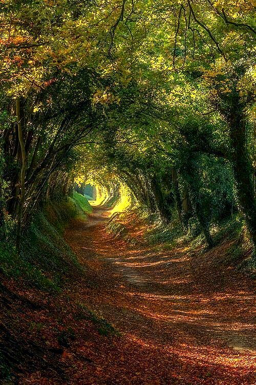 l'ancienne route & hellip;  via Pinterest