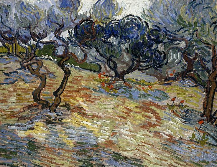 Оливковые деревья. Винсент Ван Гог