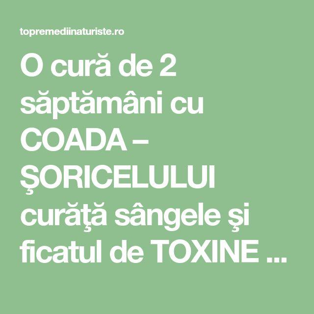 O cură de 2 săptămâni cu COADA – ŞORICELULUI curăţă sângele şi ficatul de TOXINE - Top Remedii Naturiste
