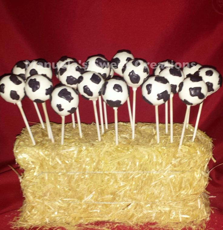 Cow Print Cake Pops For A Barn Animal Baby Shower  on Cake Central