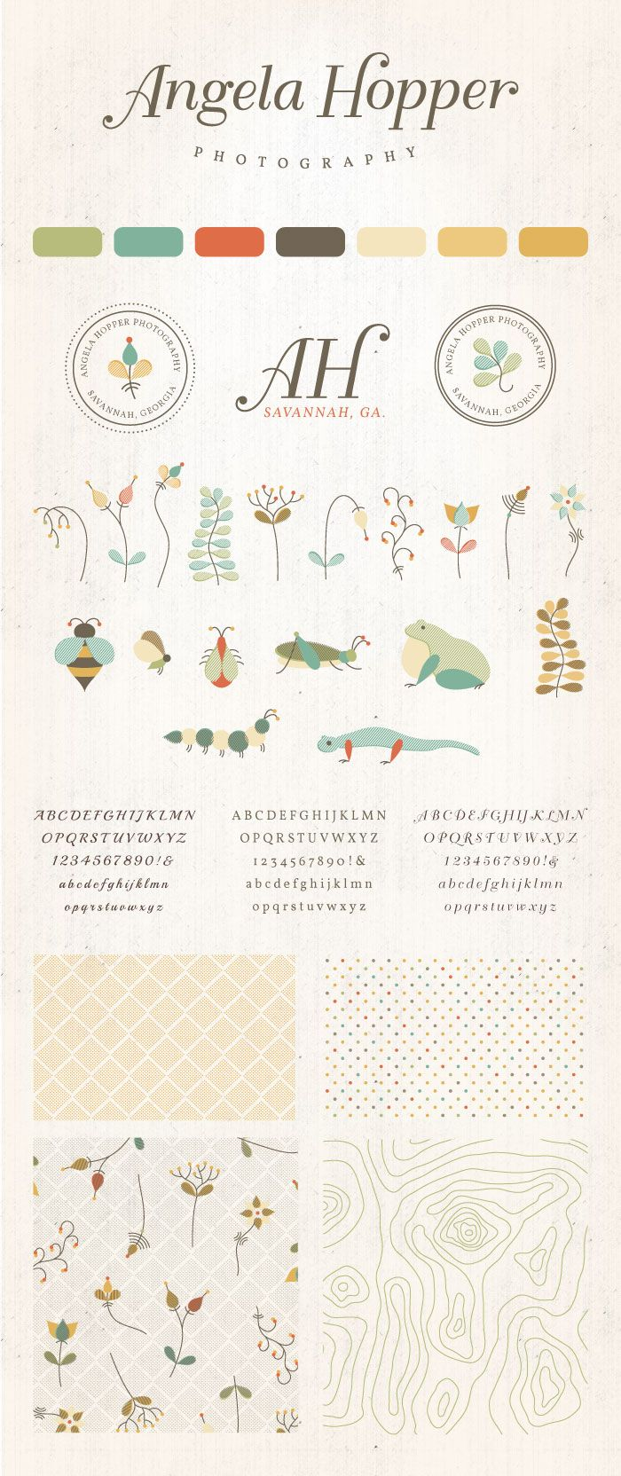 Small Business Branding & Identity Design for Angela Hopper Photography- organic illustrations