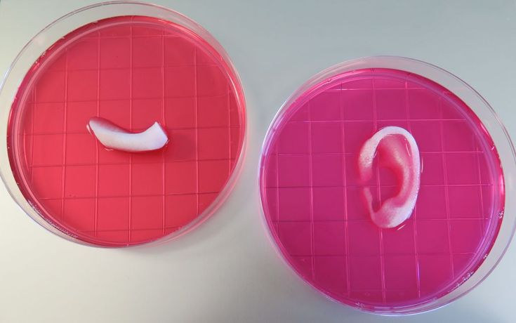 This 3D printer creates human muscles and tissues that could actually replace real ones - Quartz