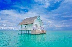 こんなところで結婚式を挙げたいそう思える場所モルディブが素敵過ぎる 地上の楽園モルディブのランダーギラーヴァルという場所にあるホテル The Four Seasons Resort Maldives ザフォーシーズンズリゾートモルディブではインド洋のど真ん中でよりプライベートでトロピカルな結婚式を挙げられます なんてエキゾチック() tags[海外]