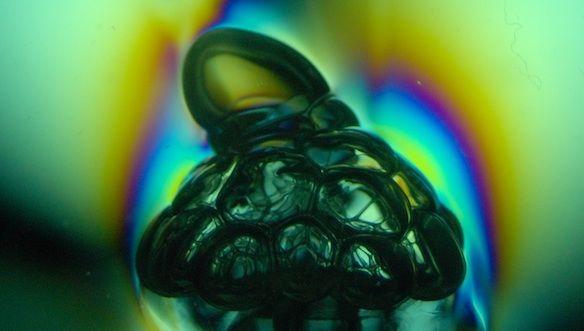 Micellar bubble cluster