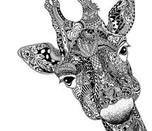 117 best images about Zentangle Animals on Pinterest