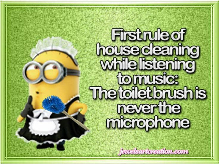 Toilet brush is not a microphone minionmania for Music to clean to