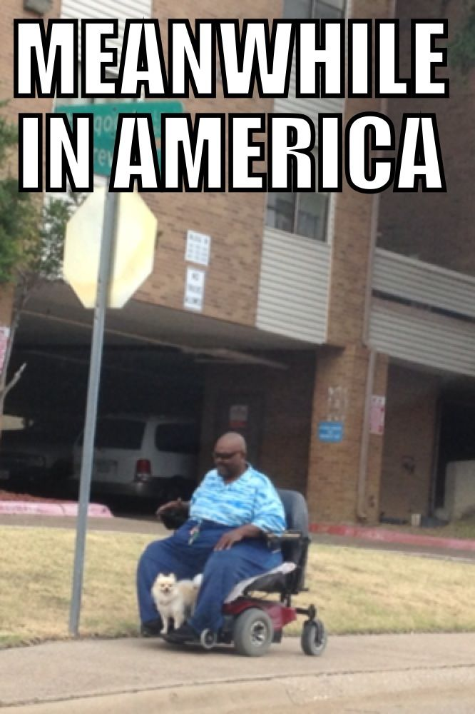 180af53a4fdc7966e85d1cbd76b721bc meanwhile in america meme my very own \