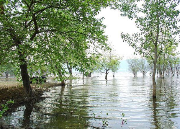 Volvi  Lake  Macedonia Greece