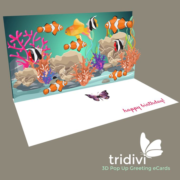 Birthday Cards, Free Birthday eCards, Greeting Cards - tridivi™