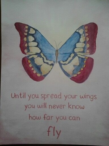 Butterfly Lighting Diagram