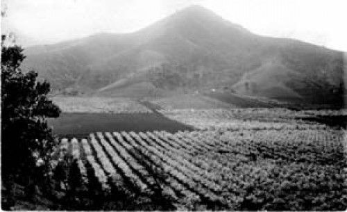 Image result for el toro morgan hill ca