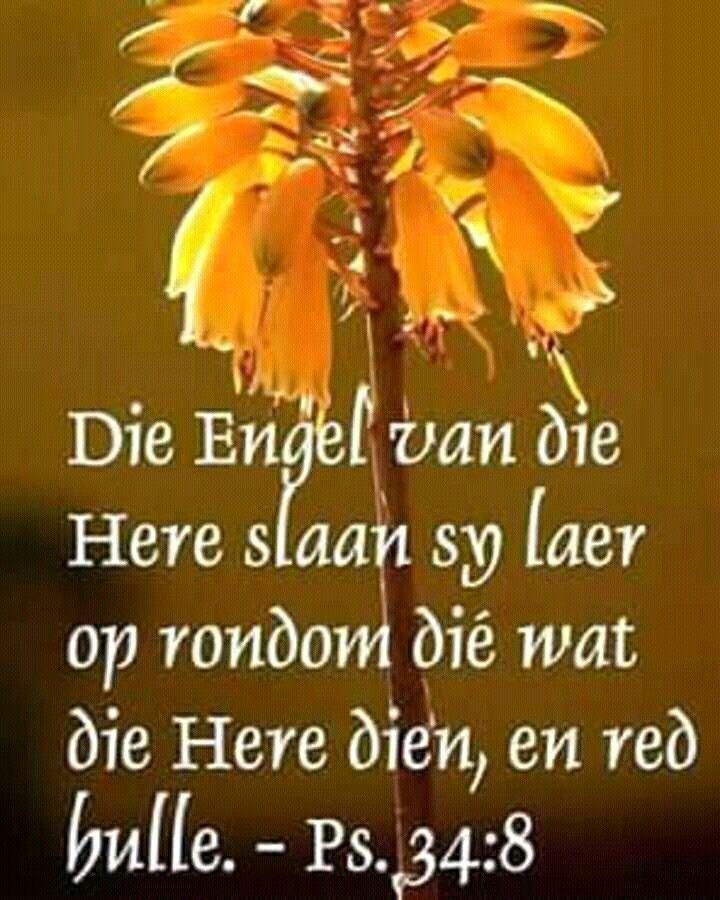 Teks - Ps 34:8 #Afrikaans #FavVerses More