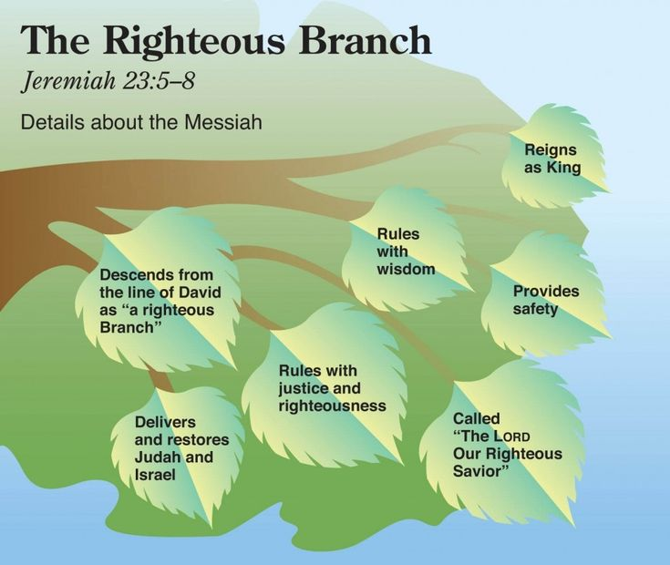 Jeremiah 23:5-8 The Righteous-Branch.jpg (1017×858)