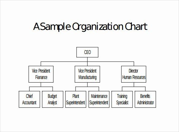 Unique Blank Organizational Chart Template 2020 Organizational