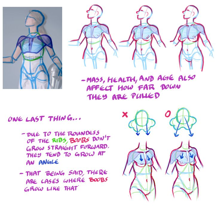 Tips And Techniques For Drawing Boobs  Page   Tutorials