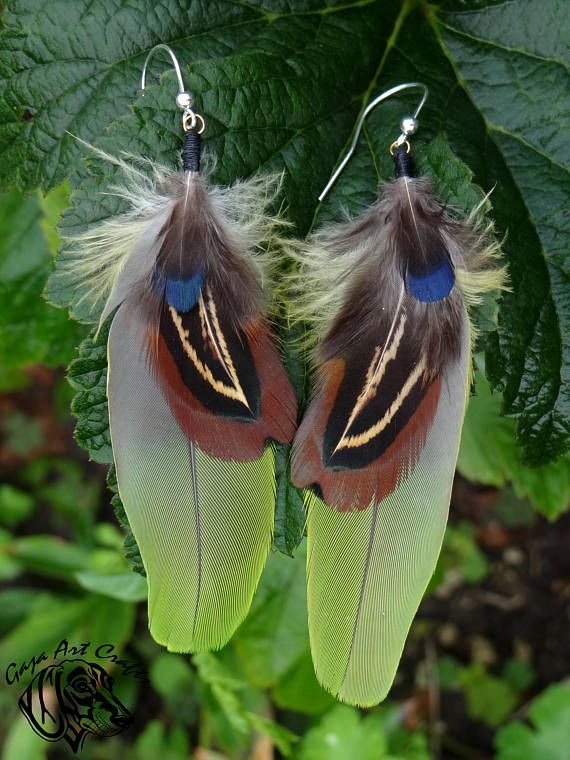 Iridescent green and blue rusty-brown feather earrings