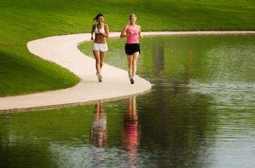Сколько нужно бегать, чтобы похудеть. Бег для начинающих - программа для похудения