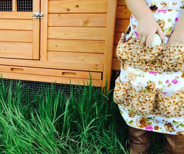These chicken egg aprons are so fun and make your experience in the yard more enjoyable! Our Egg Aprons are hand sewn with several fabric styles to choose from! If you would like to select a specific