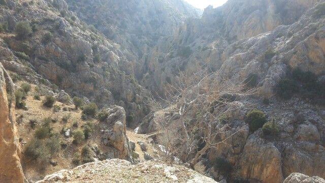 Avgan Kanyonu