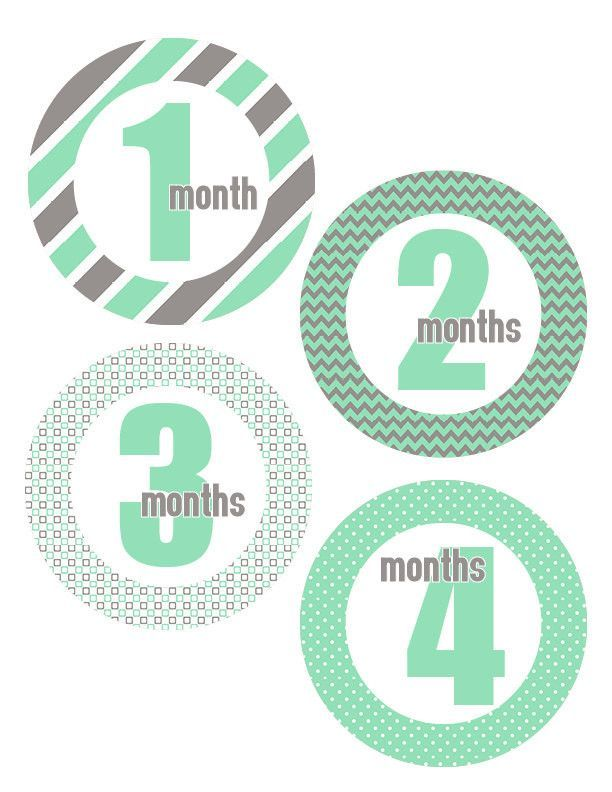 18 Month Stickers: Mint Gray Monthly One-piece Stickers