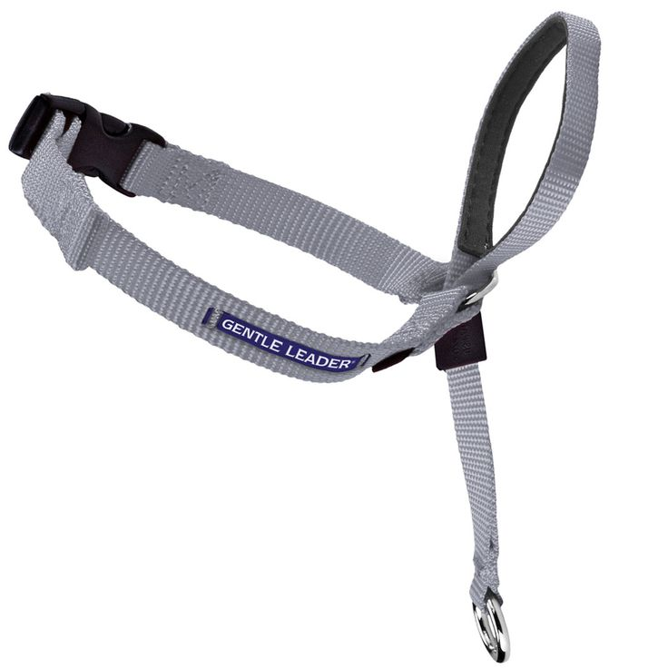 More than 5 million dog owners have found the secret to stress-free walks! The Gentle Leader Headcollar stops pulling, lunging, jumping, and other unwanted behaviors with immediate, gentle control. Unlike traditional collars, the Gentle Leader places pressure on the back of the neck instead of the front of the delicate throat, preventing choking and coughing. The nose loop allows you to direct your dog's head in the direction you want to go. Most dogs quickly learn to stop pulling and start…