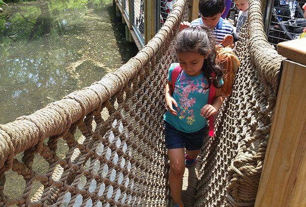 Tips for a great visit to Bronx Zoo