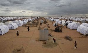 Dadaab refugee camp, Kenya 90% of families don't have access to electricity  Safer refugee camps; clean cookstoves; reforestation; violence; security; clean energy fund; UNHCR