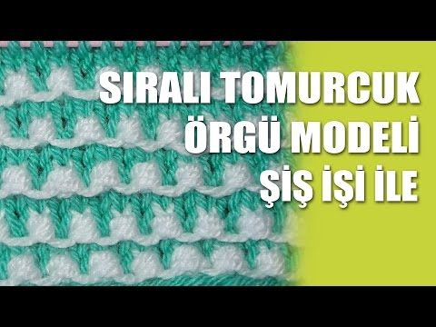 İki Renkli Tomurcuk Modeli - YouTube
