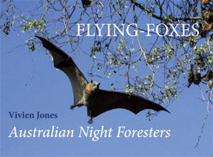 Vivien Jones, author and photographer, has a deep affection for this threatened species, and has spent over twenty years studying the Grey-headed Flying-fox in the wild. She is recognised for her detailed knowledge and experience by scientists specialising in flying-foxes. www.rosenbergpub.com.au