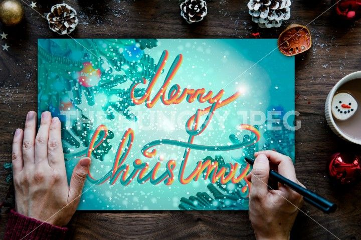 Merry Christmas Hand Drawn Lettering With Fir And Snow. Xmas Design Label Elements for holiday invitation, greeting, card and headline, title, emblem, print. Vector