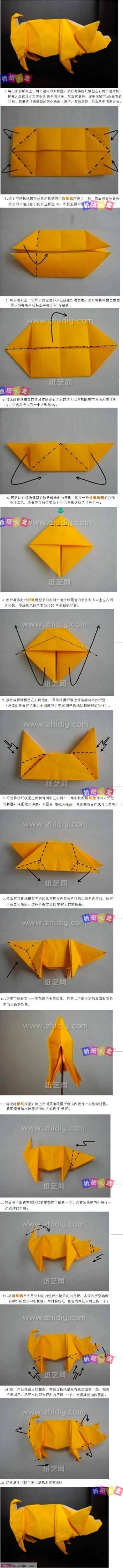 Origami Siga