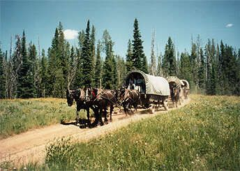 BEST VACATION EVER!!!!!!  Teton Wagon Train and Horse Adventure out of Jackson Hole, WY