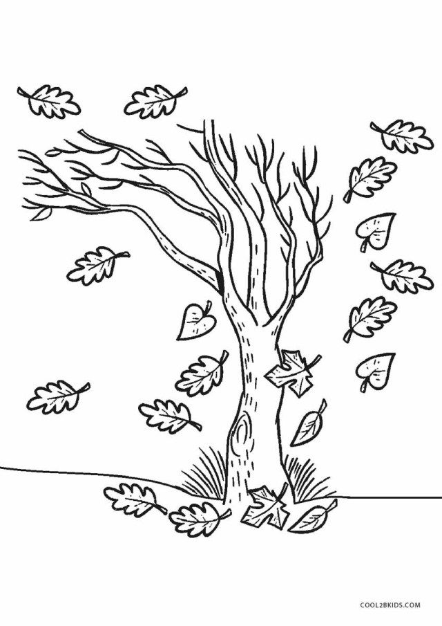 27 Amazing Picture Of Fall Tree Coloring Pages Tree Coloring